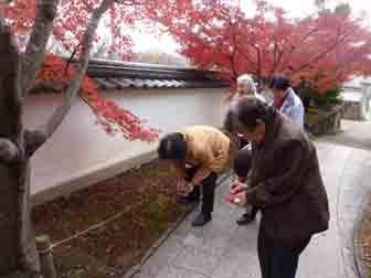 観音寺の紅葉2