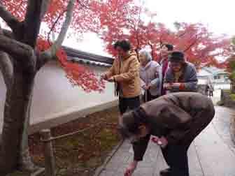 観音寺の紅葉3