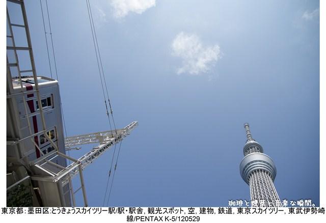 s-2-02.jpg