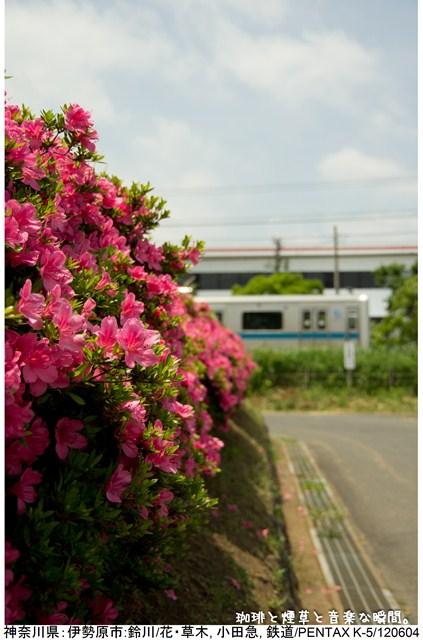 s-tate-1.jpg
