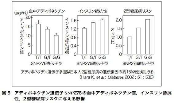 アディポネクチン論文 図5