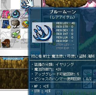 Maple003_20101212215549.jpg