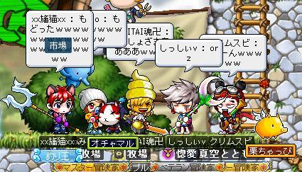Maple003_20110130124342.jpg