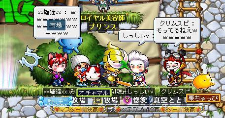 Maple004_20110130124342.jpg