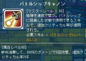 Maple007_20110214201645.jpg