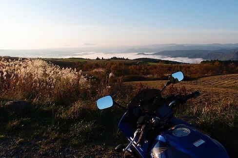 亀石の雲海