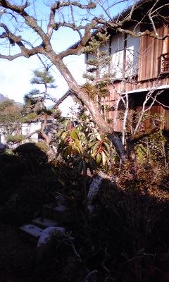 田野庭2、101229_1548~02