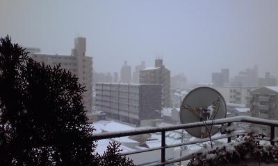雪サンコミ2、110116_1528~02