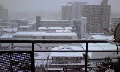 雪サンコミ5、110117_0923~01