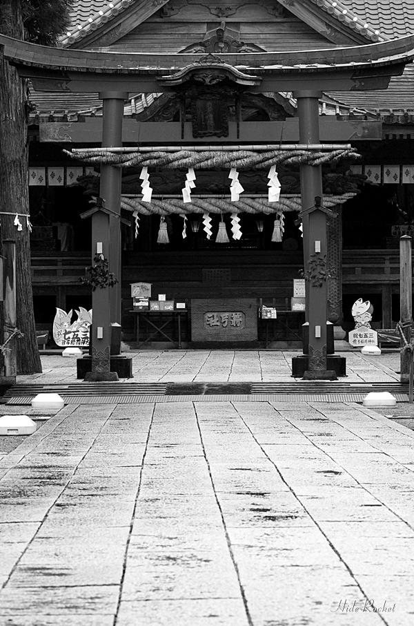 yakyu_inari_03.jpg