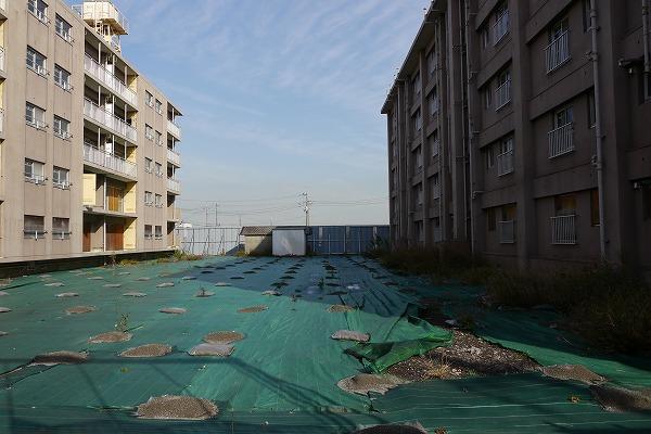 201012蟹ヶ谷 (8)★