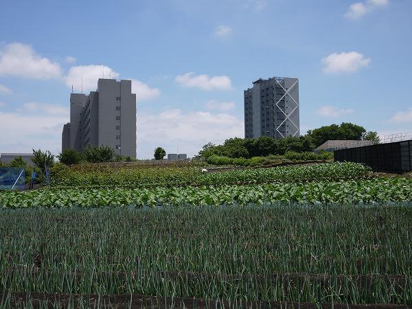 201006瀬谷 (59)★