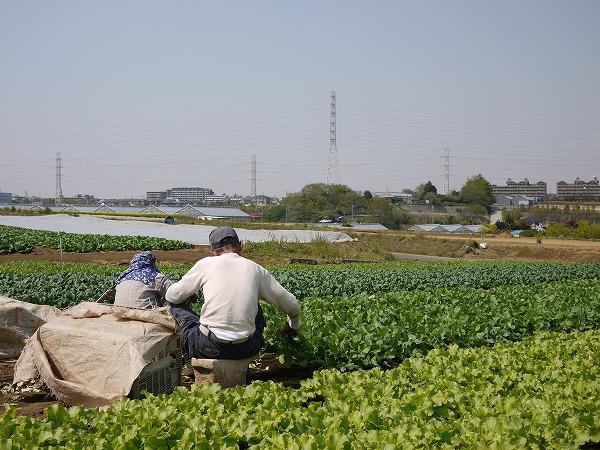 201004東方 (60)★