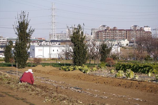 201101東方テスト (51)★