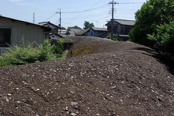 大蛇2007