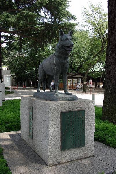 犬2007タテ