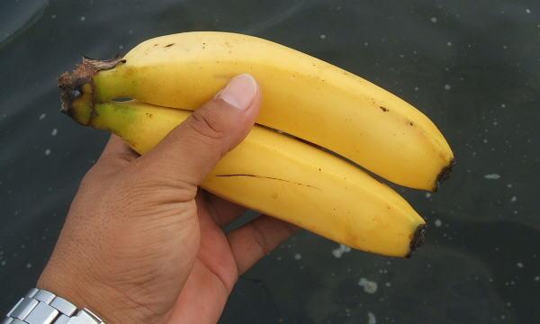 なぜかバナナ (* ̄m ̄) ププッ