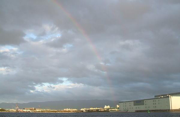 キレイな虹が出ました ^^