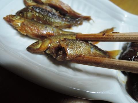 鈴木養魚場12