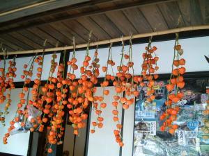 fukushima+037_convert_20101019152958.jpg