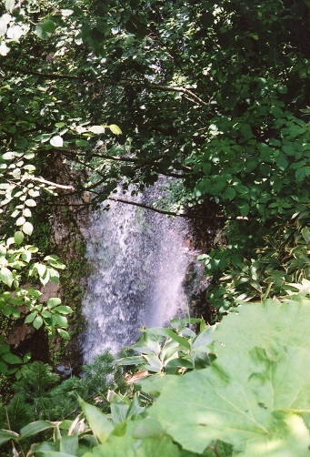 下金山林道の滝0