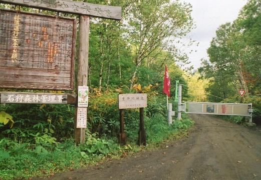 豊平川林道