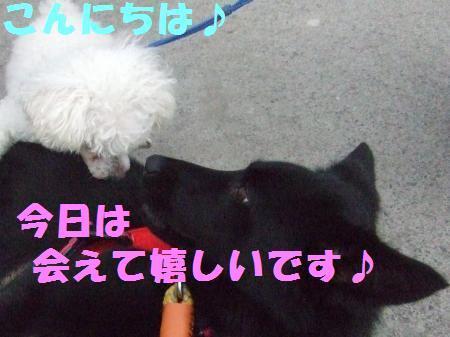 _20100703-6.jpg
