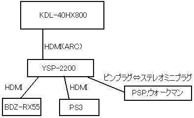 ysp2.jpg