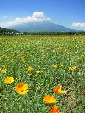 2011_0716山中湖0028