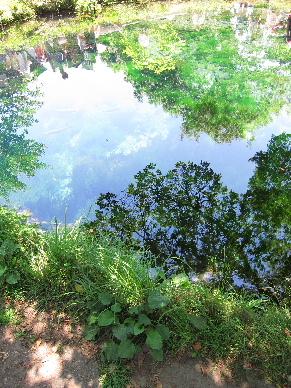 2011_0716山中湖0035