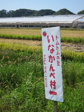 2011_0910田んぼアート0003