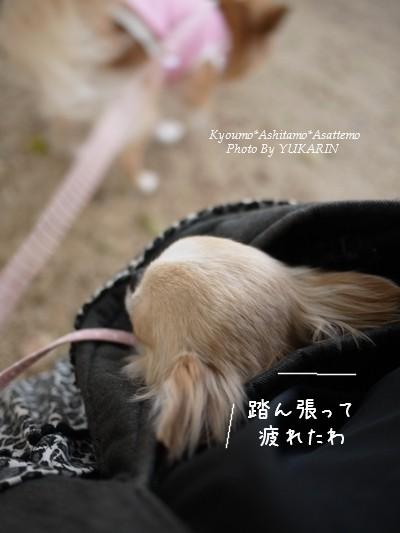 2011-04-21-006.jpg
