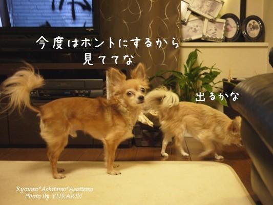 2011053105.jpg