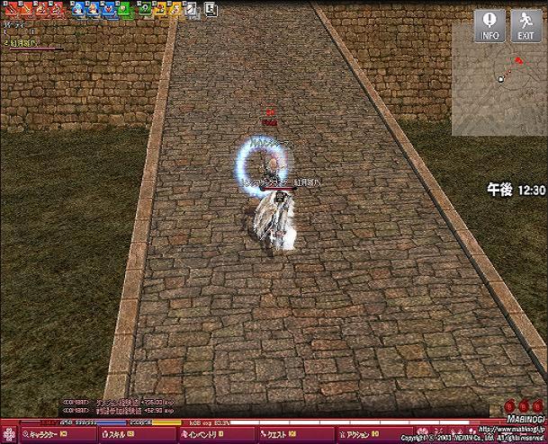 mabinogi_2010_09_05_001.jpg