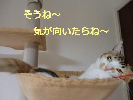 20131103_172.jpg