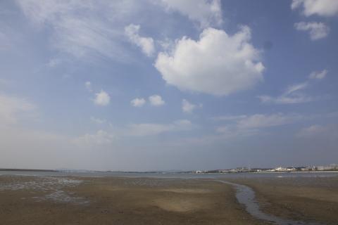 wajirohigata20111007.jpg
