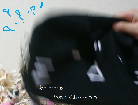 f982.jpg