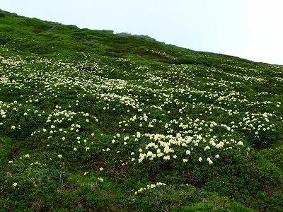 2010羊蹄山22