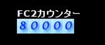 80000アクセス