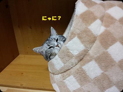 おやすみ中2