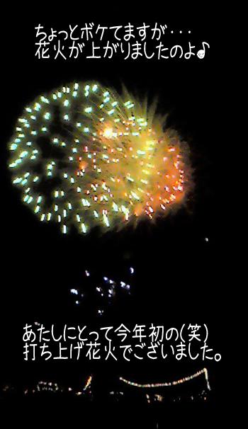 20100819d.jpg