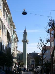 ユスキュダル 街灯の上に鳥が