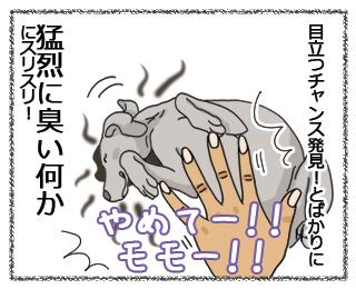 羊の国のラブラドール、モモちゃん絵日記2