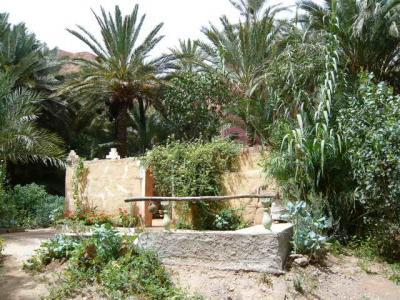 モロッコ・砂漠ツアーのランチ(2日目)13