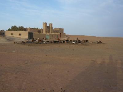 モロッコ「サハラ砂漠(メルズーガ)のテント」17