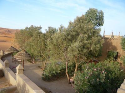 モロッコ・メルゾーガ「Hotel Yasmina」12