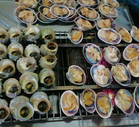 蛤とサザエ