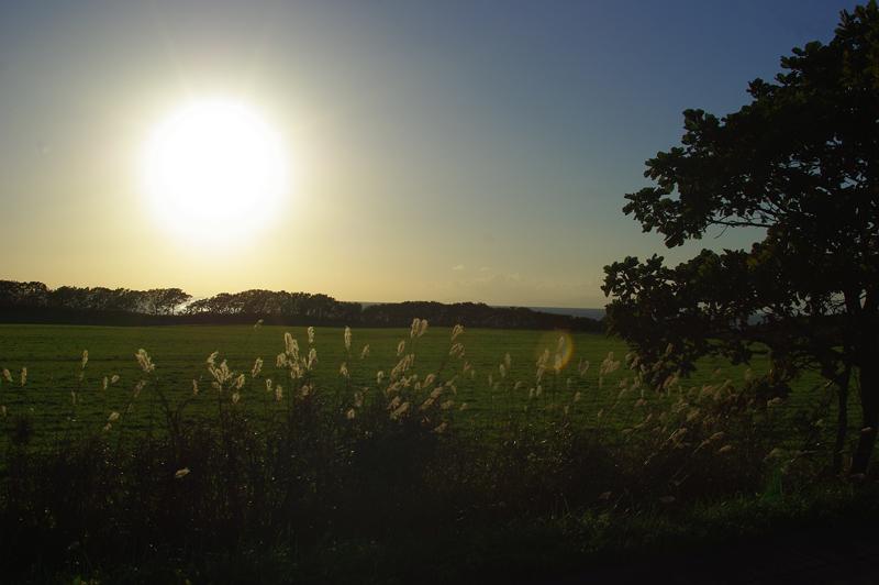日高の夕日