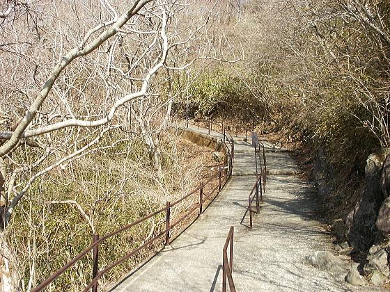 筑波山の山道です。