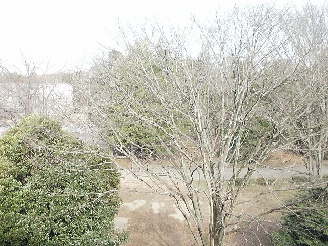 学生宿舎(4階)の窓からの風景